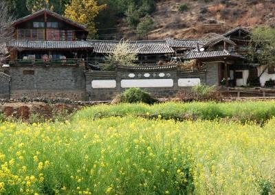 神農寨全景