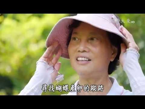 【幸福銀髮讃】第一季第二十五集 喘息服務 舒緩照顧者的身心 20160621