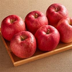 【日本】富士蜜蘋果8入禮盒