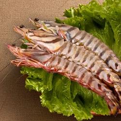 澎湖野生大明蝦