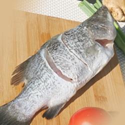 鱸魚(整尾)